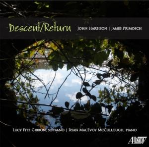 descent return cover
